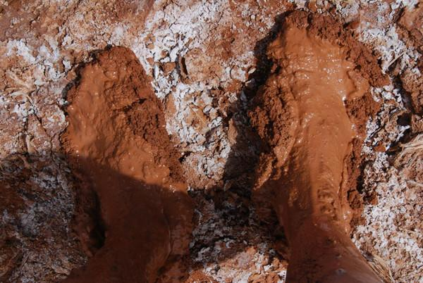 大羌塘自助游图片