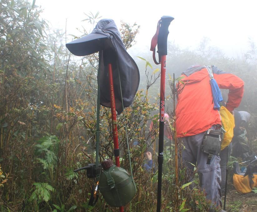 MBC登山杖 M120 测评报告