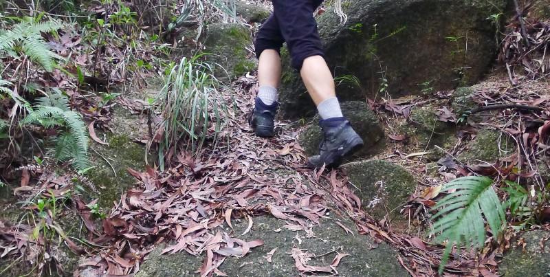 ZEALWOOD 远足系列 Merino羊毛袜 测评报告