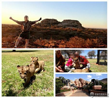 狩猎 南非 爱克兰 娱乐活动 小狮子
