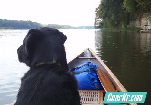 如何带着你的狗去露营