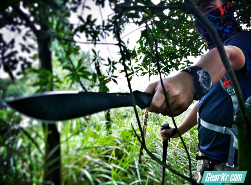 先锋利器–汉道柳叶测评