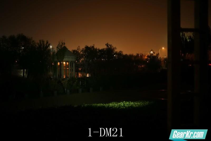 1-DM21