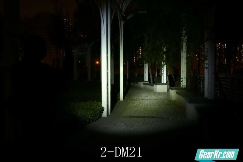2-DM21