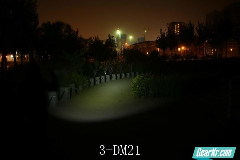 3-DM21