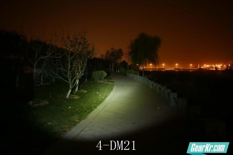 4-DM21