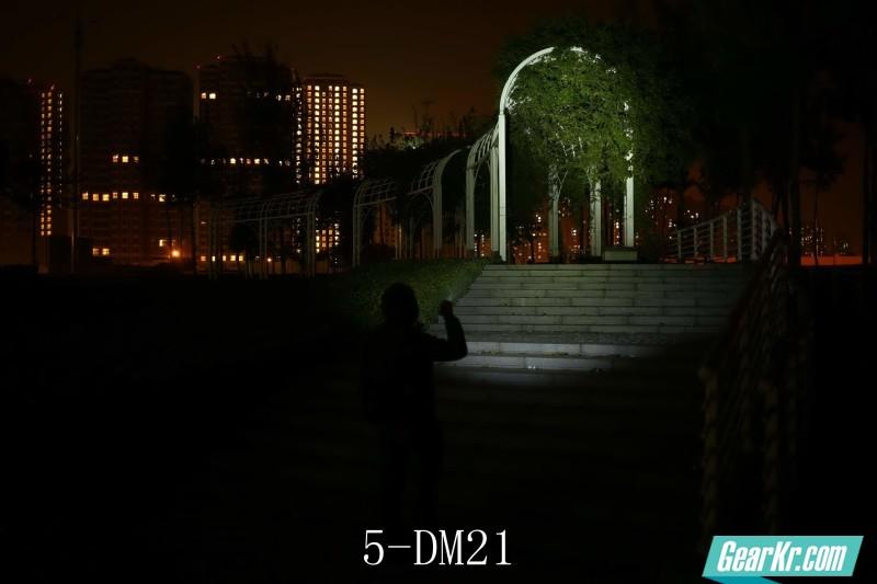 5-DM21