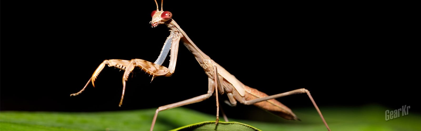 Arc'teryx始祖鸟 螳螂26L包测评